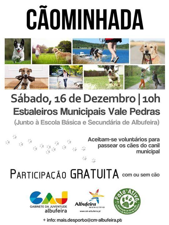 caominhada-municipal-pata-ativa-dezembro-2017